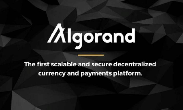 被套40天,投资者拍下的Algorand终于可以提前解套了